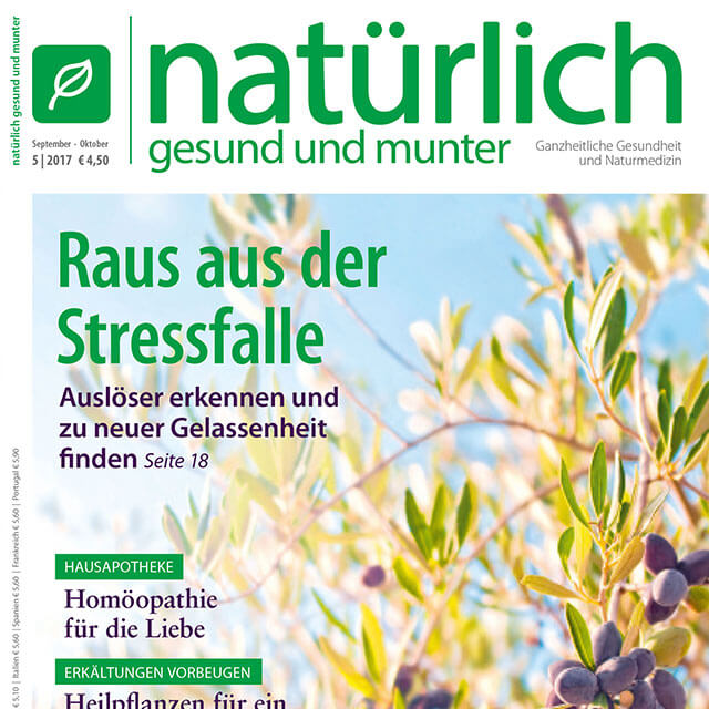 Print-Design: Magazin-Konzeption und -Layout